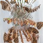 """""""Desarquitetura"""", 2013, photograph, 180x90 cm"""