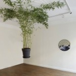 ''Coqueiro Chorão'', Exhibition view at Ibid Projects, London, UK, 2014