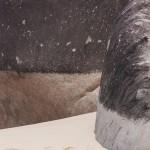 """""""Há entre as pedras"""", 2013, photograph, 200x150 cm"""