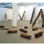 """Ainda não, contrapássaro"", 2009, installation, 12 railroad ties, water bags and live fish of different species"