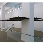 """Ainda não, contrapássaro"", 2009, installation, iron boards and rubber, steel wires, lead birds"