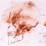 Untitled, 2009, Sanguine on paper, 34x45,5x3cm