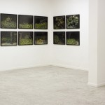 "From the series ""Marginais"", exhibition view ""Insulares e Marginais"", Galeria Mercedes Viegas, Rio de Janeiro, RJ, 2011"