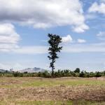 """In depth (landmines) #01"" - Cambodia series, 2014, Province of Battambang, Cambodia, 11 large scale prints"