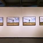 """In depth (landmines) #01"" - Cambodia series, 2014, Province of Battambang, Cambodia, 11 large scale prints, exhibition view PIPA Prize 2014, MAM-Rio, Rio de Janeiro, Brazil, photo Gian Lana"