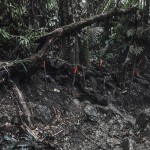 """""""In depth (landmines) #03"""" - Colombia series, 2015, Narino, Antioquia, Colombia, 7 large scale prints"""