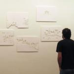 Installation view at Centro de Arte Helio Oiticica, 2010