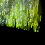 Amoahiki ,(Shamanic) Song trees | 2008 | video installation