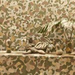 "From the series ""Camouflaged Still life , 2012, photo, 70X110 cm"