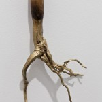 "The Golden Age"" (detail), 2006/2012, Object, cane and root, 140x12x2 cm Artist Proof"