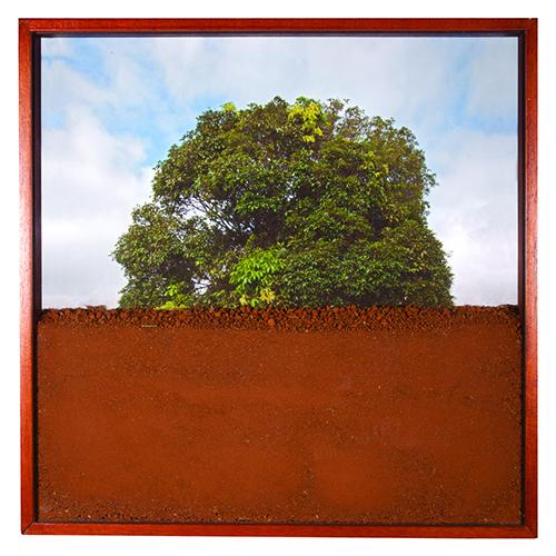 """""""Espaço Confinado"""", 2013, photo, mineral print on cotton paper and land, 45x45cm"""