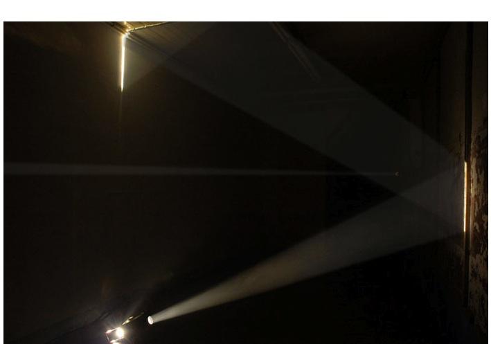 """ Bicho de nariz delicado,"" 2013, 2 slide projectors, 2 slides only, mirrors, smoke, wood partially gold-plated, animal. Show: ""Uma certa falta de coerência"", Porto, Portugal."