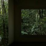 """16mm"", 2008-2011, film, color, synchronized 5.1 digital sound., 5'26"" (projection size: 172 x 131,5 cm)"