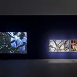 Exhibition view 'O Sacudimento'