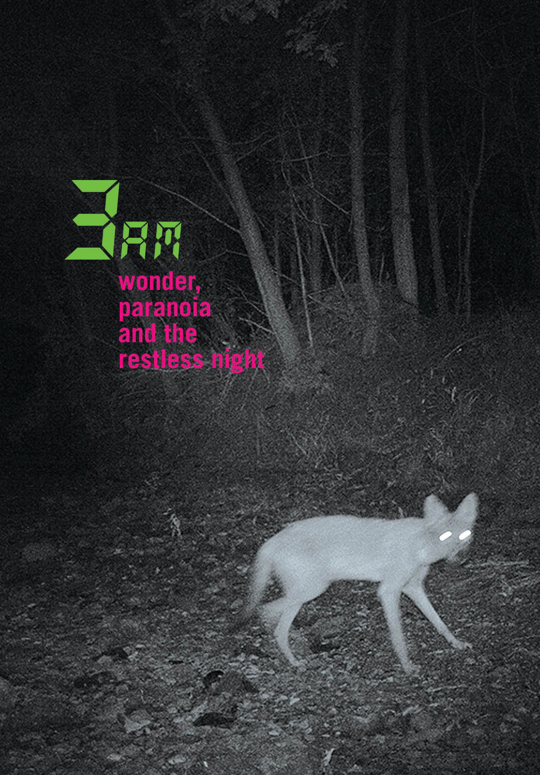 3 am wonder paranoia and the restless night pipa prize