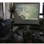 """""""2101 – The Impossible Museum Of Living Things"""", 2011,  Site specific installation, Installation views at Other Possible Worlds event - Casino Luxembourg, variable dimensions"""