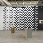 "Installation view, ""Contract of Risk, Galeria Luisa Strina, São Paulo, Brazil, 2015"