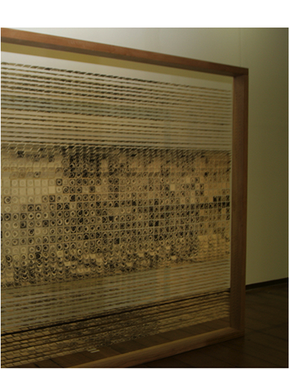 """""""Trance"""", 2007, mural/installation, 280x380x10 cm, etching (aqcua forte, acqua tint), stainless steel wires, wood frame, photo: Tracy Collins"""