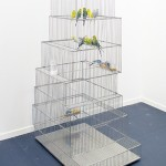 'Museum / Cages (New Museum)', 2009, stainless steel, variable dimensions