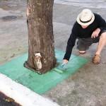 'Green Areas', 2015, oil on cement, 1 x 1 m. Photo Edson Kumasaka