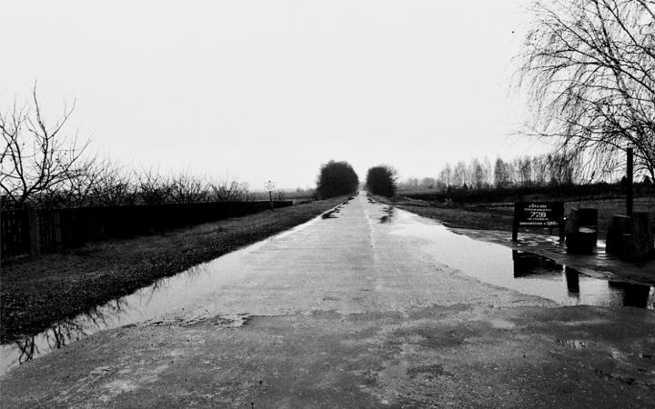 Imagens-Camillo-Alice.007