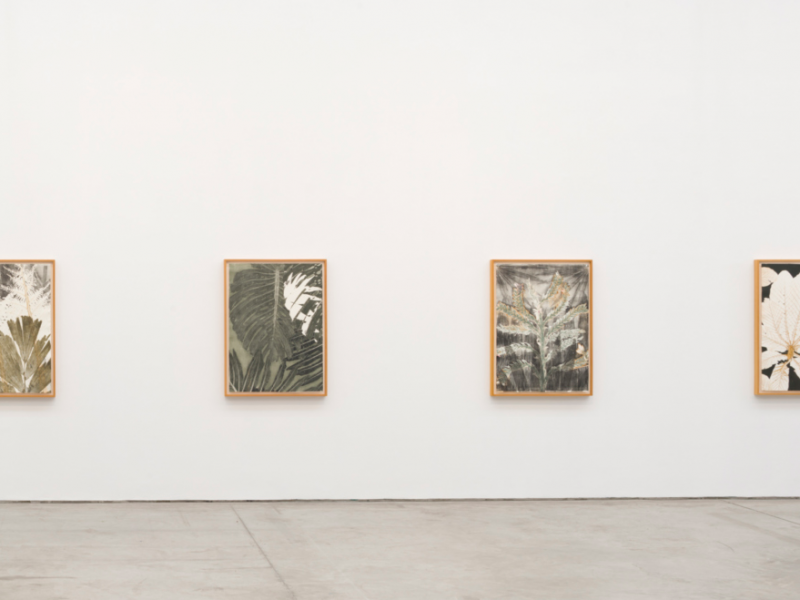 "Exhibition view of ""Monotypes"", solo show by Luiz Zerbini"