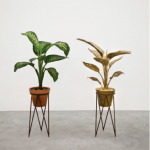 Vanderlei Lopes. Dumb Cane (Seguine Dieffenbachia), 2017. Bronze, ceramic, iron, stone, plant and dirt. Variable dimensions. Edition of 2.